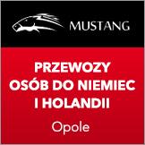 przewozy do niemiec, holandii - Busymustang.pl